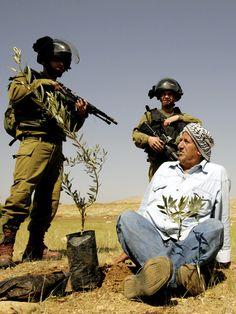 Palestinianism