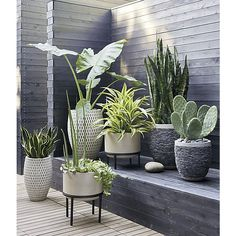 Stacked Rock Planters | Crate and Barrel