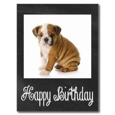 Happy Birthday Bulldog Puppy Chalkboard Postcard  http://www.zazzle.com/happy_birthday_bulldog_puppy_chalkboard_postcard-239591497862730182?rf=238669615131463341