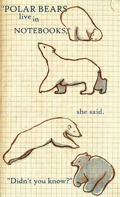 Polar Bears Live in Notebooks