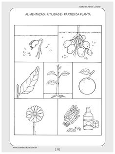 Imagem relacionada atividades pinterest 119 atividades envolvendo temas relacionados a natureza e sociedade ccuart Image collections