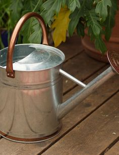 Our Galvanized Watering Can is a gardening classic and watering workhorse.