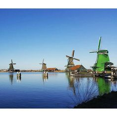 @damian.vann is one of our talented January students. He's been to Zaanse Schans over the weekend on a study trip with CES.  Could the Netherlands be any more picturesque than this?