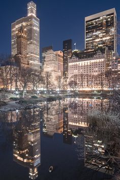 New York Discover Central Park at Night Central Park at Night Photographie New York, Travel Photographie, New York Wallpaper, City Wallpaper, New York Life, Nyc Life, Central Park, City Vibe, New York Christmas