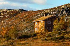 http://cabinporn.com/post/164712669597/alpine-winter-cabin-in-norway-taken-in-early