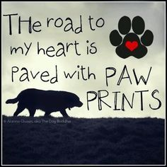 Dogs leave paw prints on our hearts forever...