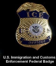 ICE Federal Badge Law Enforcement Badges, Federal Law Enforcement, Immigration And Customs Enforcement, Funny Dancing Gif, Police Badges, Dance Humor, Sheriff, Knives, Badges