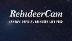 Watch ReindeerCam is Santa's Official Reindeer Live Feed!
