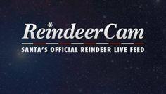 Watch ReindeerCam is Santa's Official Reindeer Live Feed!
