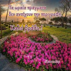 Good Night Greetings, Good Morning Good Night, Greek Quotes, Slogan, Spirituality, Plants, Instagram, Spiritual, Plant