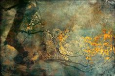 Dream Fine Art Photography by AnneSolfud on Etsy, $17.00
