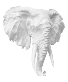 Take a look at this Elephant Head Wall Décor on zulily today!