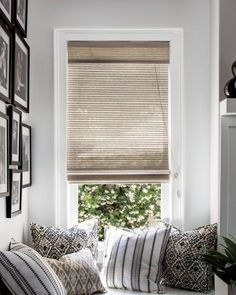 """Natural Woven Flat Fold Shades - 18149, Wendy Bellissimo Home 22"""" Tailored Square Pillow - 17930, Wendy Bellissimo Home 22"""" Tailored Square Pillow - 17942,"""