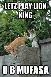 Funniest Cat Memes For 2020 Kittens Meow Kitten Kitty Cute Love Pet Catlife Funny Cat Memes Funniest Cat Memes Funny Disney Memes