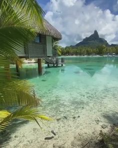 Explore the most amazing honeymoon destinations and resorts in the world. Amazingly affordable honeymoon destinations like this are available around the world. holiday destinations bora bora Honeymoon in Bora Bora Best Family Holiday Destinations, Best Honeymoon Destinations, Vacation Places, Dream Vacations, Affordable Honeymoon, Honeymoon Packing, Disney Honeymoon, Dream Vacation Spots, Honeymoon Fund