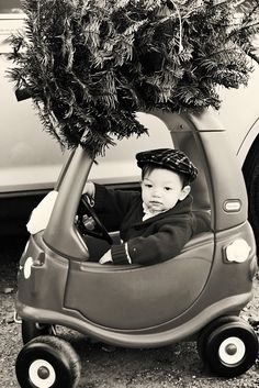 I thought this was the cutest thing I'd ever seen! Christmas Tree Cutting, Mini Christmas Tree, Magical Christmas, Christmas Baby, Christmas Cards, Christmas 2014, Christmas Decor, Christmas Ideas, Toddler Christmas Photos