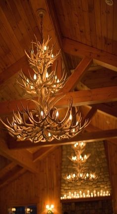 Tiered Antler Chandelier  - ours will be about as tall but wider and probably not tiered.