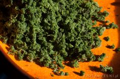 Parsley, How To Dry Basil, Herbs, Herb, Medicinal Plants