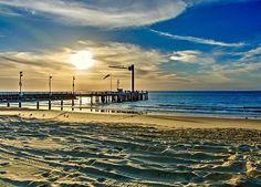 Gorgeous Sunset. On Morton Island.  #tangalooma #Island. #mortonIsland. #Australia #Queensland #Ocean #beach. #Travel #Sunset  #seashore. #sunset  #sun  #pretty #beautiful #sky  #nature #clouds #horizon #photooftheday #instagood #primeshots #gorgeous #warm #view  #sunrays  #instasky #all_sunsets #gold #picphotographer