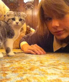 16 Times Taylor Swift's Cats Had Something to Say
