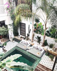 Some good ideas for landscaping from this pool at Le Riad Yasmine Marrakech, Morocco Le Riad, Riad Marrakech, Marrakech Gardens, Morocco Hotel, Morocco Travel, Medina Morocco, Fez Morocco, Casa Patio, Rooftop Terrace