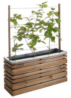 jardiniere plantes grimpantes - Recherche Google