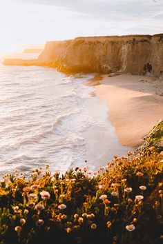 #banshy:    Pacific Coast Sunset // Wayne