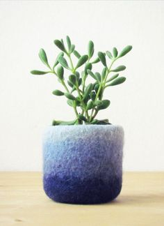 Ombre Felted Plant Holder