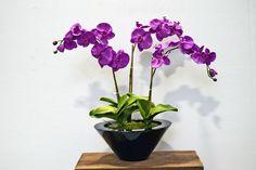 TreeLocate - Purple artificial flower #windowdisplay #artificialflowers
