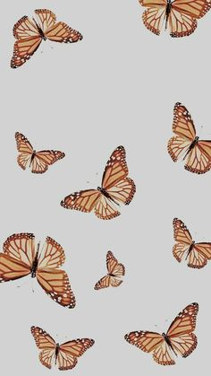 Butterfly Wallpaper Iphone, Iphone Wallpaper Vsco, Homescreen Wallpaper, Iphone Background Wallpaper, Iphone Wallpapers, Wallpaper Quotes, Cute Patterns Wallpaper, Aesthetic Pastel Wallpaper, Aesthetic Wallpapers