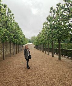 Chateau-tastic! Even the rain didn't stop us from exploring the gardens at Villandry.