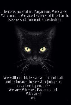 We will not hide