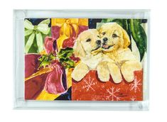 Rainbow Card Company Christmas Cards with Envelopes - Golden Retriever *** Visit the image link more details. (This is an affiliate link and I receive a commission for the sales) Memorial Stones, Cat Memorial, Rainbow Card, Card Companies, Christmas Cards, Christmas Postcards, Pet Supplies, Cat Lovers, Pets