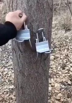 Non-slip tree climbing tool for hunting, digging out birdhouses, observing and collecting fruits💪 - Cool Welding Project Ideas for Home Survival Tips, Survival Skills, Climbing Tools, Container Gardening Vegetables, Cool Inventions, Useful Life Hacks, Welding Projects, Diy Tools, Cool Gadgets