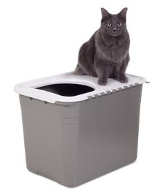 Inspirational Side Entry Litter Box