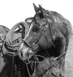 Horse drawing by Karmel Timmons