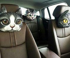 Cat car headrest pillows