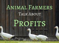 How do farmers balance profits with animal care?