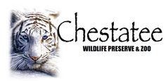 Chestatee Wildlife Preserve, Inc. is the only exotic animal rescue and wildlife preserve in North Georgia. Home to white Siberian Tigers, African Lions, Grizzly Bears and many other exotic and endangered species. Chestatee Wildlife is just off Hwy 115 /52 between Cleveland and Dahlonega, Georgia.