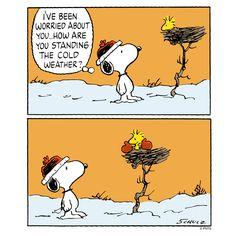 Worried - Woodstock & Snoopy #ThePeanuts #Snoopy