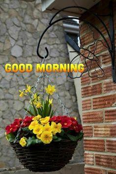 Good Morning Gif Images, Beautiful Morning Messages, Good Morning Nature, Good Morning Msg, Good Morning Beautiful Images, Morning Morning, Good Morning World, Good Morning Flowers, Good Morning Greetings