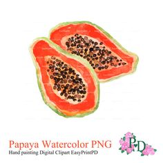 Papaya Watercolor Clipart, Hand painted illustration orange exotic fruit image clip art PNG file Digital no background EasyPrintPD    • Instant