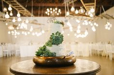 Imke and Vincent got married at the stunning wedding venue in Cape Town called Nooitgedacht.