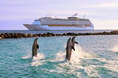Royal Caribbean Adventure of the Seas. Best Cruise Ever! Leaving from San Juan, PR. Crucero Royal Caribbean, Royal Caribbean Cruise, Best Cruise, Cruise Vacation, Belize, Freedom Of The Seas, Royal Caribbean International, Cruise Holidays, Adventure Of The Seas