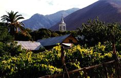 village in the pisco valley in Chile