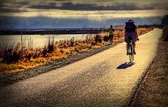 morning exercises through Shoreline | Photographer_love
