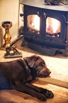 Labrador and a Cosy Fire