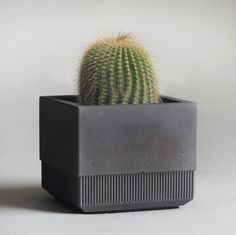b1SMALL-plain-grey-planted2.jpg