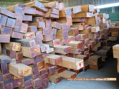 Besides furniture manufacturing, we also manufacture architectural timber structures, doors, windows, flooring, decking for both residential and commercial projects. We offer air dried, kiln-dried & reclaimed lumber in standard dimensions or custom cut to our customers' specifications. We offer lumber by the truck, exported by the container.  OUR LUMBER LIST INCLUDES : Teak, Pinkyado, Balau, Padauk, Pine, Oak, Chengal, Keruing, Ash, Makkha, Krathin, Sadao, Albizia Saman, Tamarind, etc. Teak Lumber, Reclaimed Lumber, Timber Structure, Kiln Dry, Tamarind, Decking, Firewood, Ash, Pine