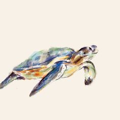 2 in 1 Turtle Print/Card on Square Watercolor by triplestudio, $9.00